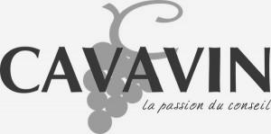 Cavavin-service-enquêtes